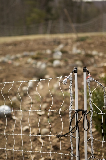 electric net fence