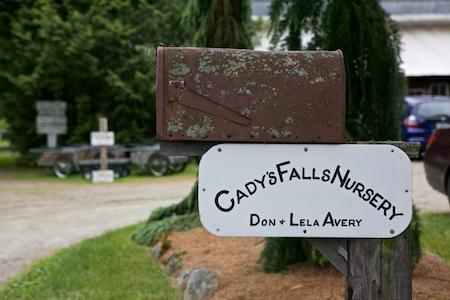 cadys falls nursery 1