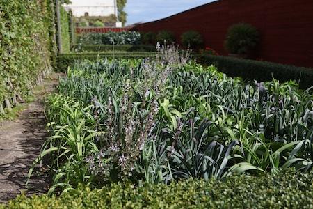 lacko-slatt-walled-lower-garden-13