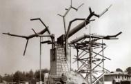 Classic Disneyland Photo - Swiss Family Robinson Treehouse Construction