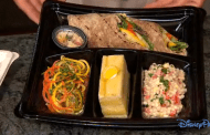 Disney's 'World of Color' Picnic Meal Choices