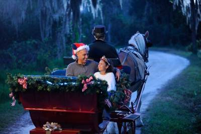 Ft. Wilderness holiday sleigh ride Disney World
