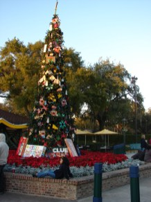 The Tree at Downtown Disney