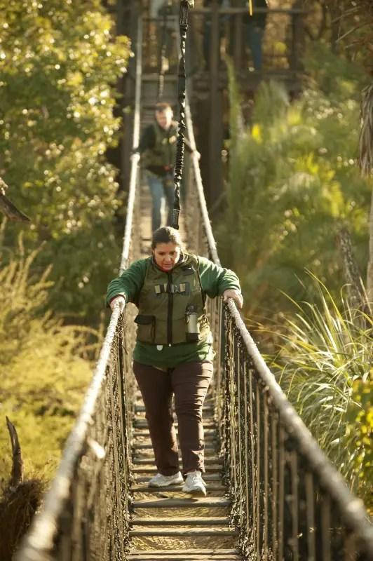Try at Disney Tour – Wild Africa Trek