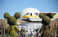 Here Are a Few More Reasons Why You should Visit Disney World in 2014
