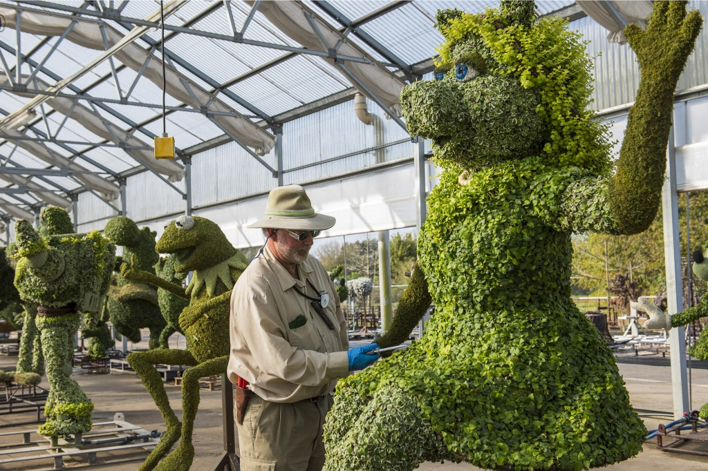 Behind the Scenes of the Epcot Flower & Garden Festival