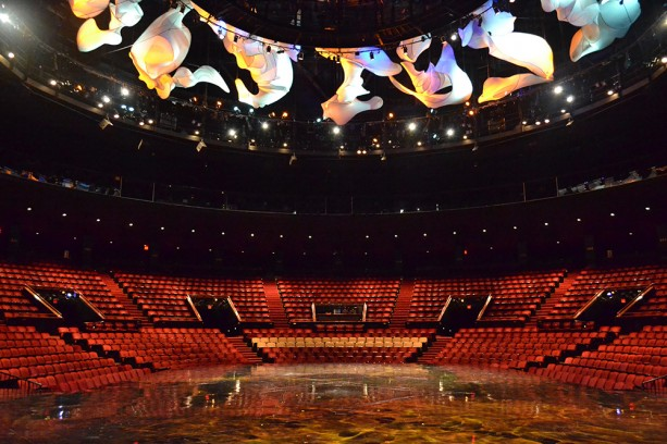 A New VIP 'La Nouba' Experience Debuts at the Walt Disney World Resort