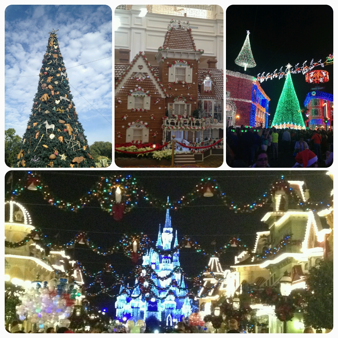 Disney World at Christmas – The Low Down