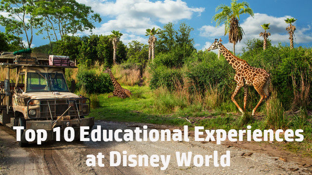 Top 10: Educational Experiences at Disney World