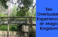 Ten Overlooked Experiences at Magic Kingdom