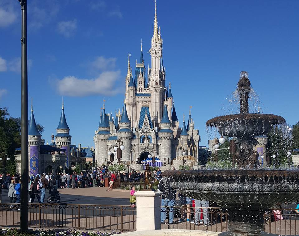 Disney World 4th quarter 2015 injuries and illnesses