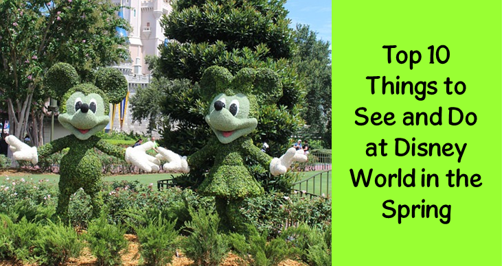 Top 10 Things To See & Do at Disney World in the Spring