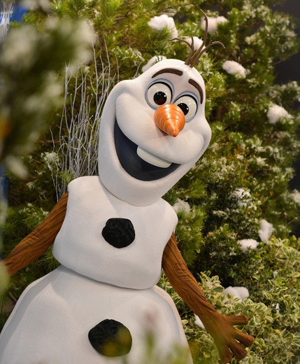Frozen Event at Blizzard Beach being hosted by Olaf and Kristoff