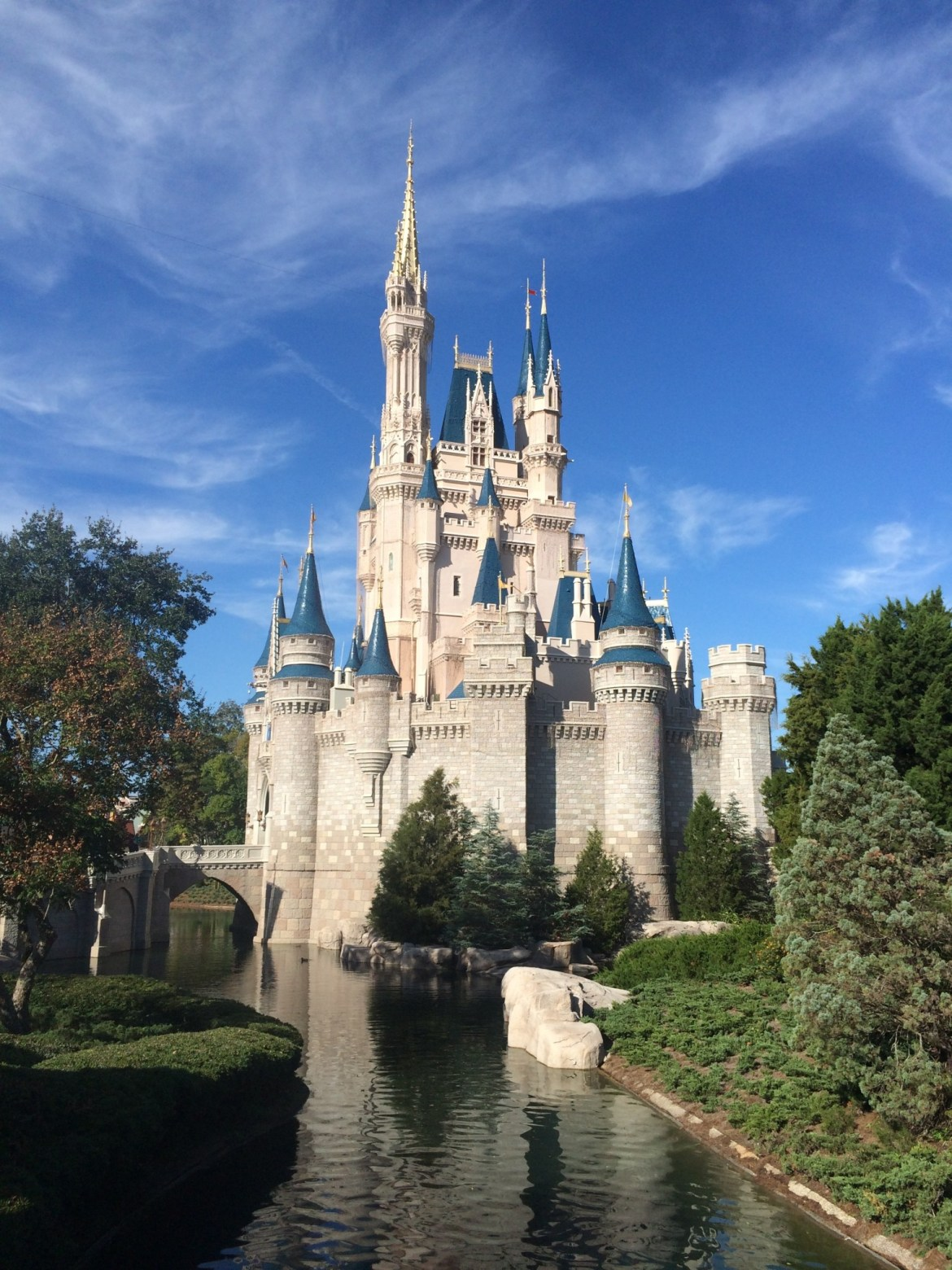 Premium Disney World Services – Guest Convenience or Money-Making Opportunity?
