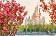 Cast Members at Shanghai Disney Begin Trial Operations