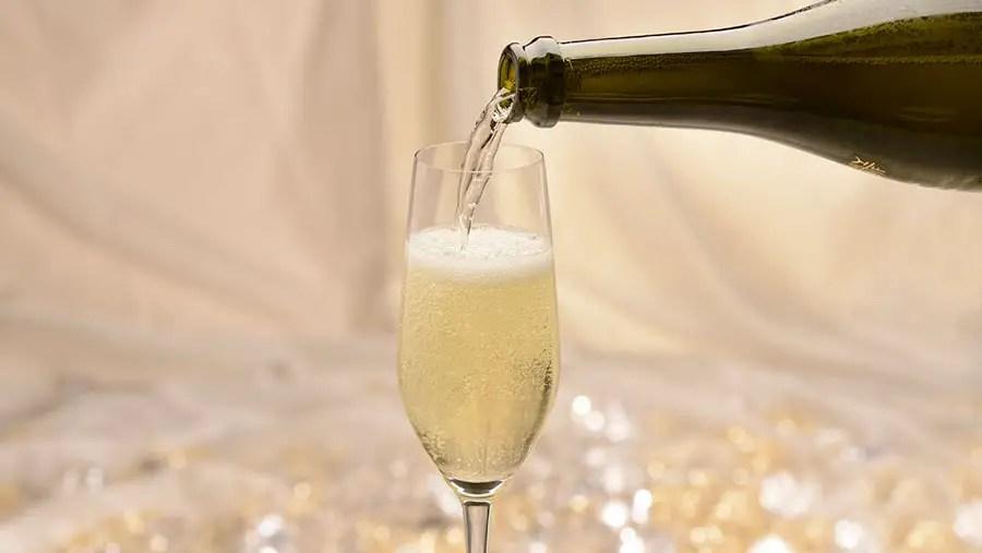 Reserve a New Year's Eve Dinner Celebration at Walt Disney World Resort