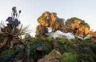 Disney Springs Hotels offers a magical deal to visit Pandora: The World of Avatar