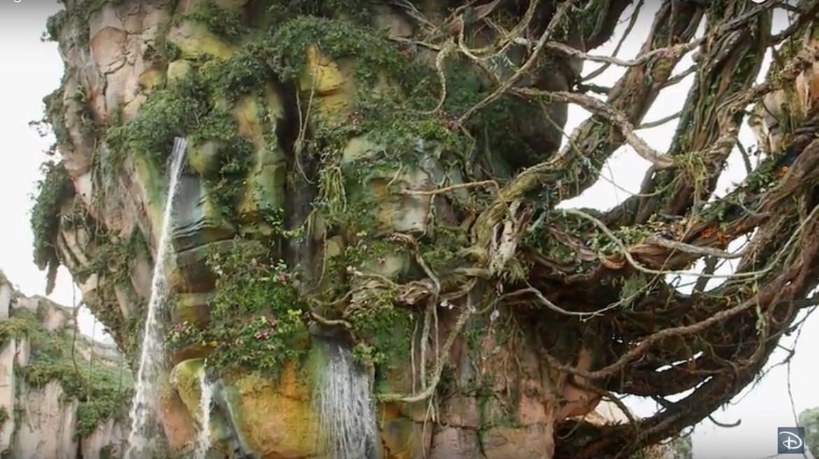 More Behind-the-Scenes Details on Pandora – The World of Avatar