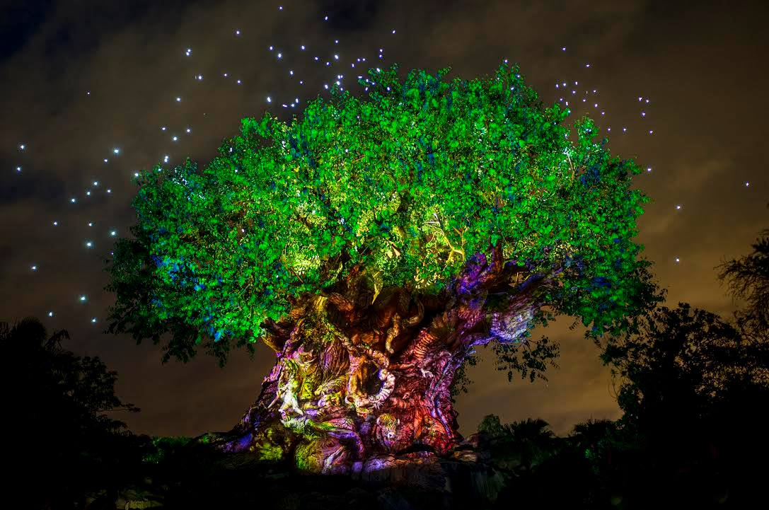The Tree of Life Lights Up In Special Ceremony Celebrating Pandora -The World of Avatar