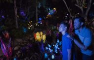 Extra Magic Hours added to Animal Kingdom Calendar Every Night Between Now and August 19th
