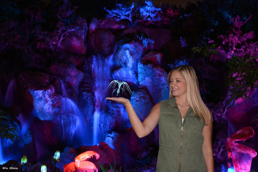 Photo Opportunities at Pandora – The World of Avatar