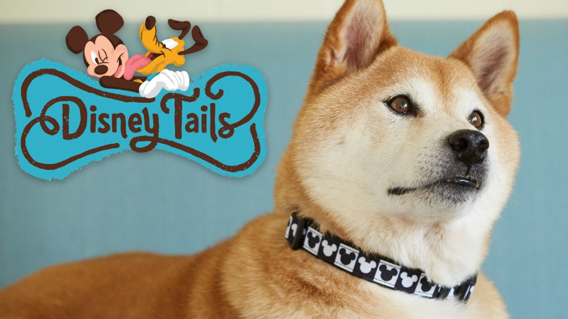 "Disney Expands Their Popular Pet Collection ""Disney Tails"" at Disney Parks"