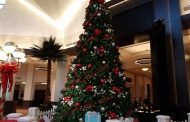 Walking Photo Tour of Swan & Dolphin Resort Holiday Decorations