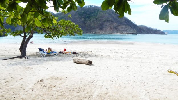 Disney Cruise Line Invites You to Explore Costa Rica with These Port Adventures