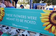 Adorable Gift Cards Are 'Blooming' at The Flower & Garden Festival!