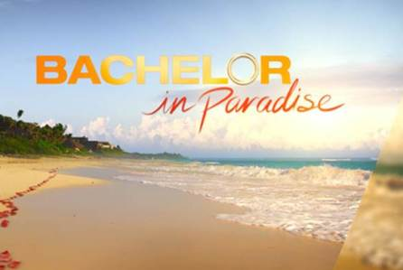 Meet the Cast of the Newest 'Bachelor in Paradise'