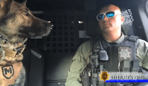 Police Officer and His K-9 Partner