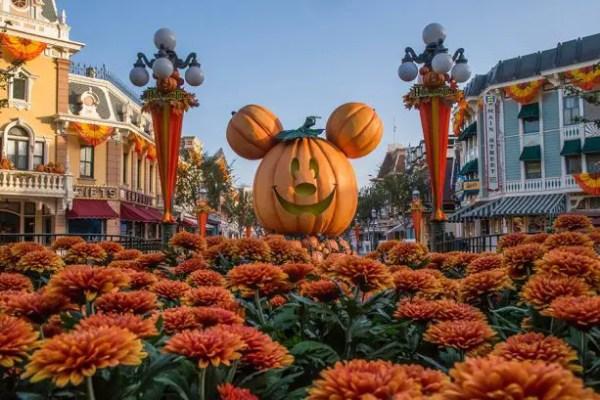 Autumn Falls over Disneyland Resort