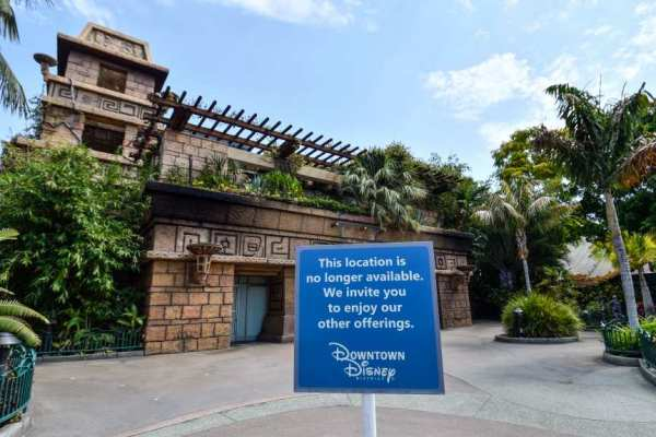Rainforest Cafe Wants to Reopen at Downtown Disney 1