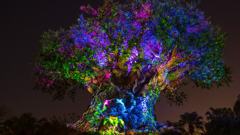 Disney's After Hours Event Tickets Are Now On Sale