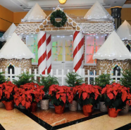 2018 Disney Cruise Line Gingerbread House Competition 3