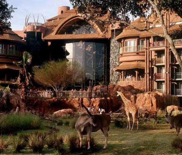 Refillable Mugs From Animal Kingdom Lodge No Longer Active at Waterparks