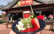 Feel Merry With This Traditional Yule-Log Complete With An Oriental Flair at Epcot