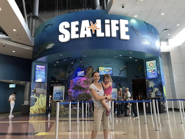Discover the Fun of Sea Life Orlando Aquarium
