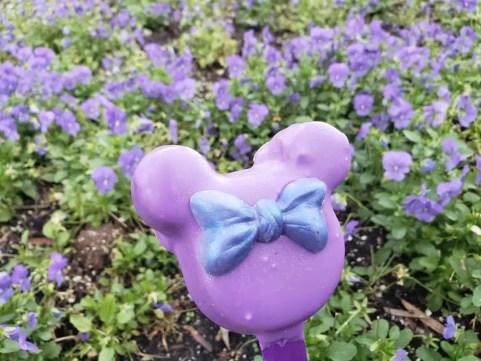 Purple Potion Treats Have Taken Over the Magic Kingdom!
