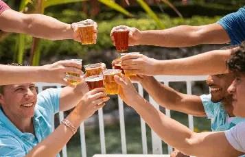 Busch Gardens Offering Free Beer in 2019