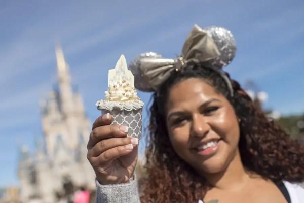 Castle Cupcake at Magic Kingdom