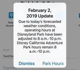 Disneyland Closes Early Due to Rain