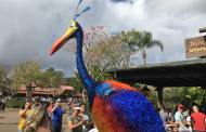 Kevin is Now Roaming Animal Kingdom