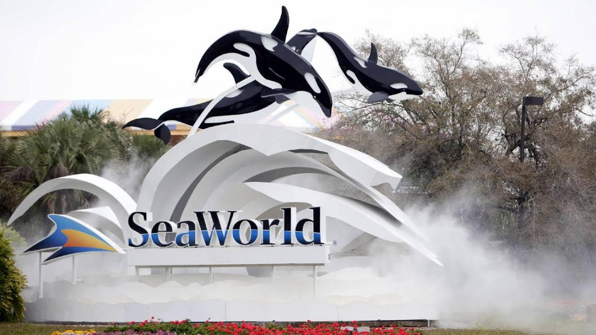 Does SeaWorld have bankruptcy concerns