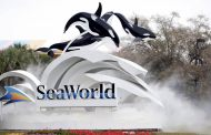 Construction liens filed against SeaWorld Orlando