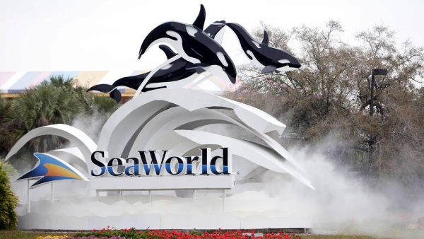 SeaWorld Parks Will No Longer Serve Foam Bowls or Plates