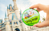 Spring Break Photo Opportunities at Walt Disney World