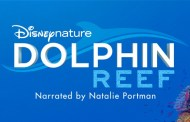 """NATALIE PORTMAN TO NARRATE DISNEYNATURE'S """"DOLPHIN REEF"""" All-New Feature Film to Debut on Disney+"""
