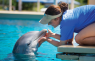 Check Out SeaWorld Orlando Adds All-New Locations to Inside Look Weekends