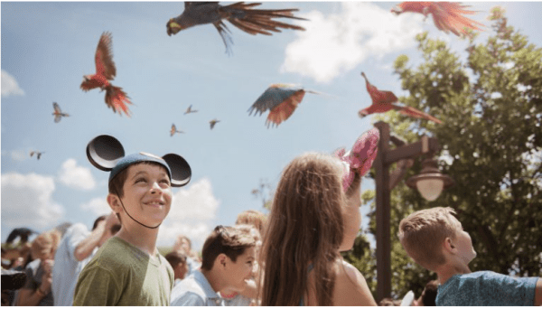 Fantastic Events Await at Disney's Animal Kingdom's Party for the Planet